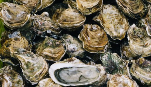 貝祭りで新鮮な海の幸を頬張る贅沢旅行!おすすめ観光地はプリンスエドワード島!