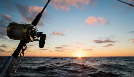 神奈川県の海上釣り堀「みうら海王」魚を釣り夏満喫!予約・当日の流れ