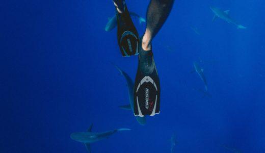 フリーダイビング3種目8種類の紹介!息を止め潜水する究極スポーツ!