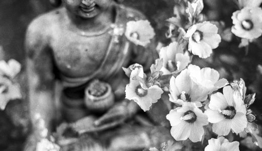仏教発祥地、世界遺産ブッダガヤのおすすめ観光スポット!マハーボディ寺院・菩提樹!