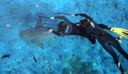 タヒチ、ボラボラ島おすすめ観光スポットとアクティビティの紹介!女子一人旅満喫!