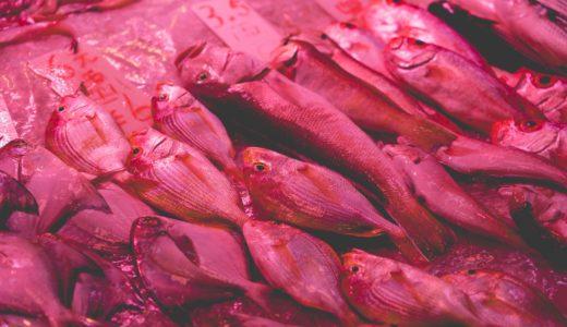「若狭ぐじ」とは?高級食材魚はどこで釣られて名前がつく?食べ方の口コミ!