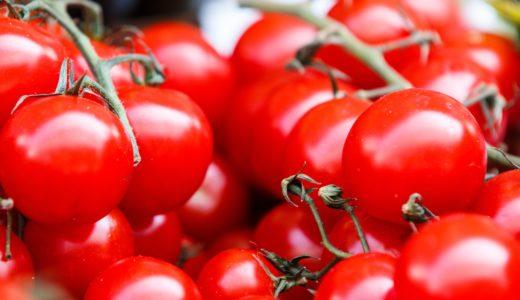 美味しく甘いトマト!見分け方・選び方おすすめポイント紹介!平均糖度と見た目チェック