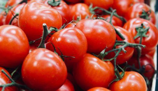 トマト農家、辻本京子さん!食堂ゆすかわ(愛媛・西予市遊子川)リコピンズ[人生楽園]