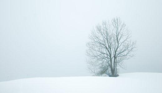 奥飛騨、山之村の伝統食品、寒干し大根とは?厳しい冬が生み出す自然乾燥食品・風物詩