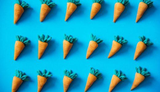 鈴盛農園スウィートキャロットリリィは桃のよう?碧南の砂、海風、塩農法で育つ甘い人参