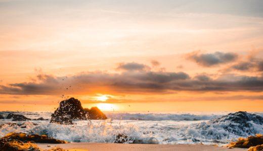 海藻とは?3大海藻ヒジキ、モズク、ワカメ栄養成分・健康効果・吸収率を向上する食べ方