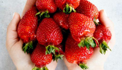 いちご(イチゴ/苺)とは?基本情報、旬の時期はいつ?野菜?甘く美味しく感じる食べ方